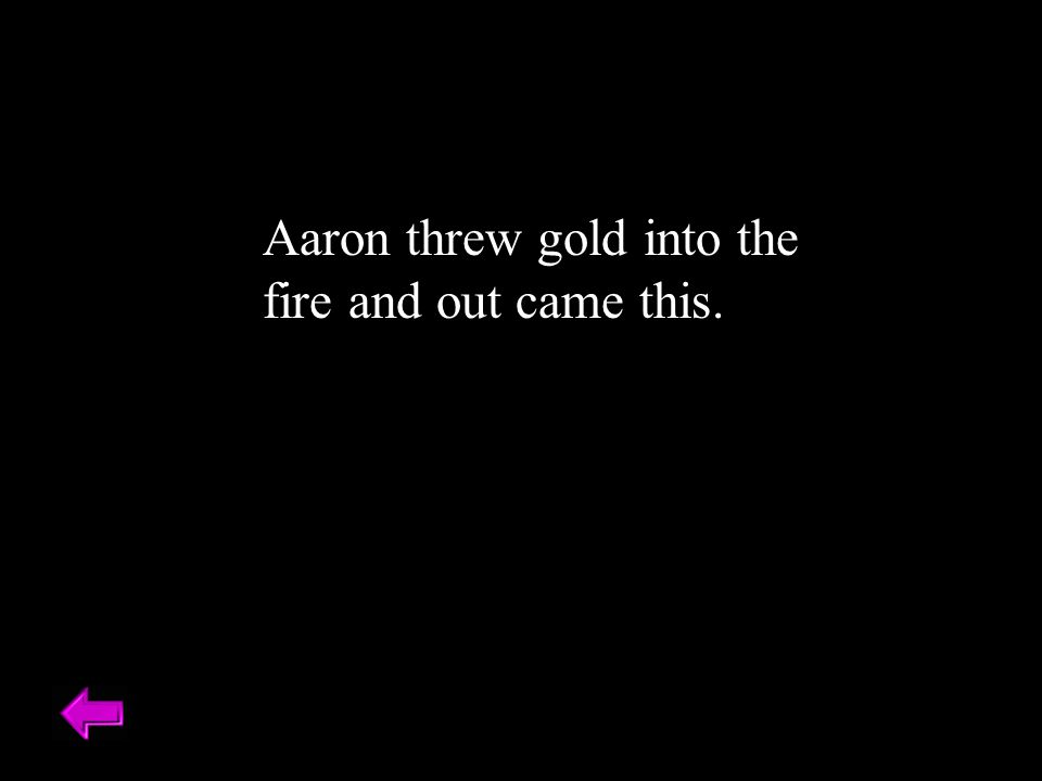 Aaron threw gold into the fire and out came this.