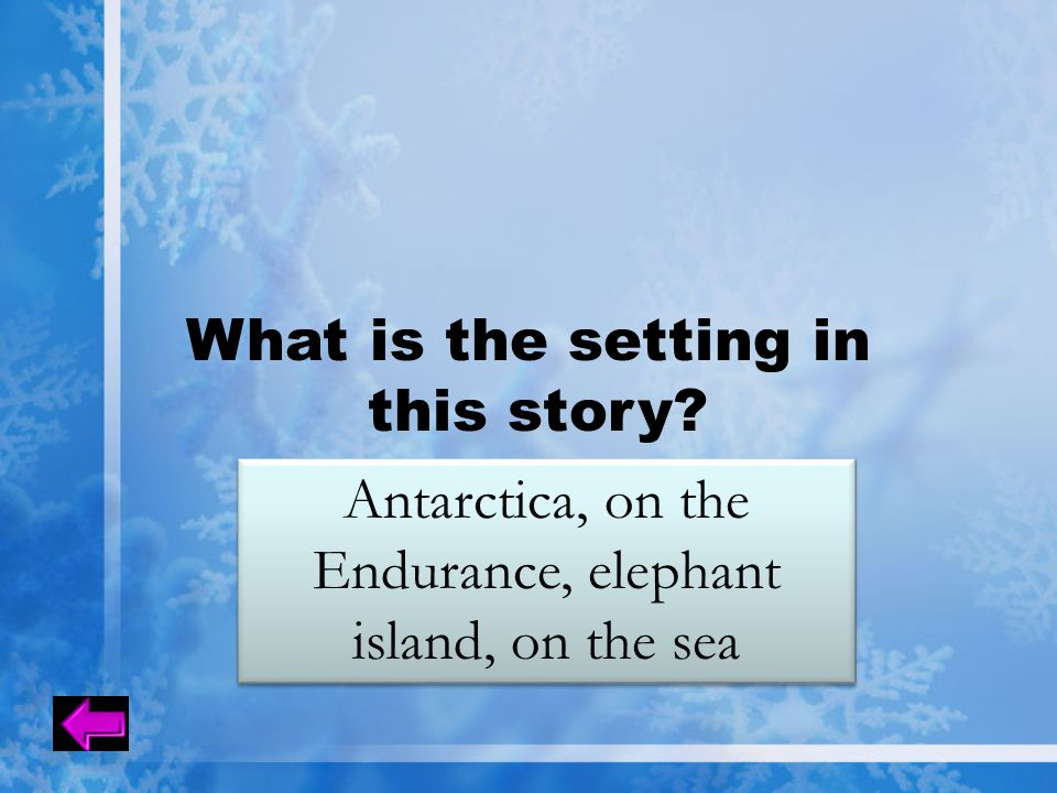 What is the setting in this story? Antarctica, on the Endurance, elephant island, on the sea