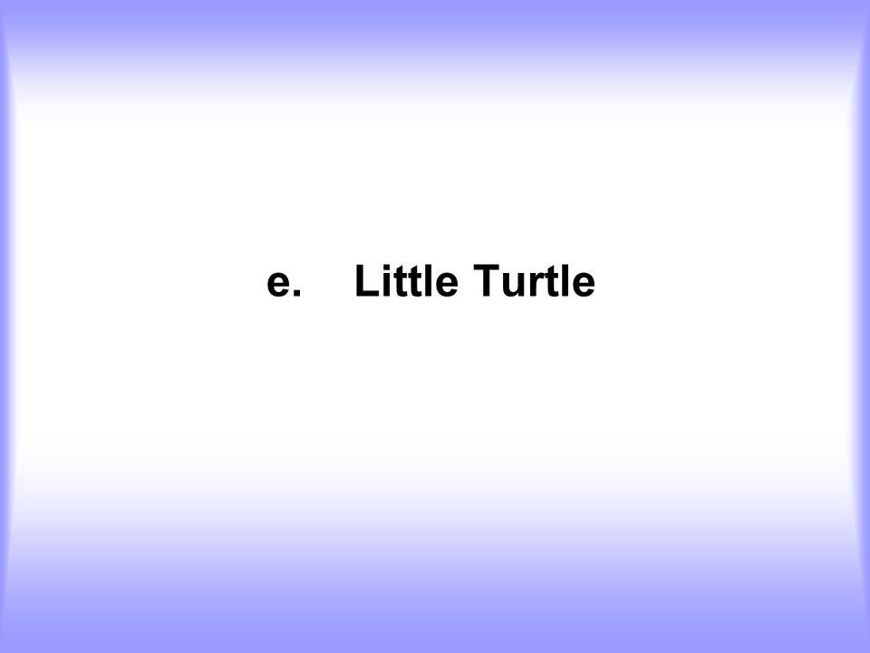 e.Little Turtle