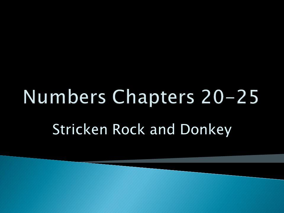 Stricken Rock and Donkey