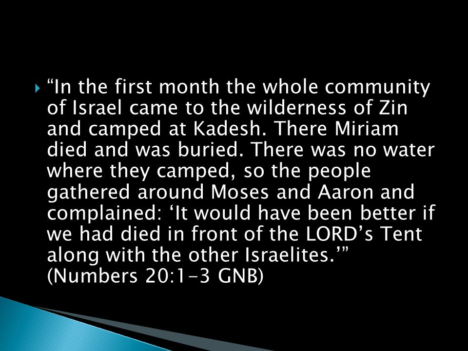  In the first month the whole community of Israel came to the wilderness of Zin and camped at Kadesh.