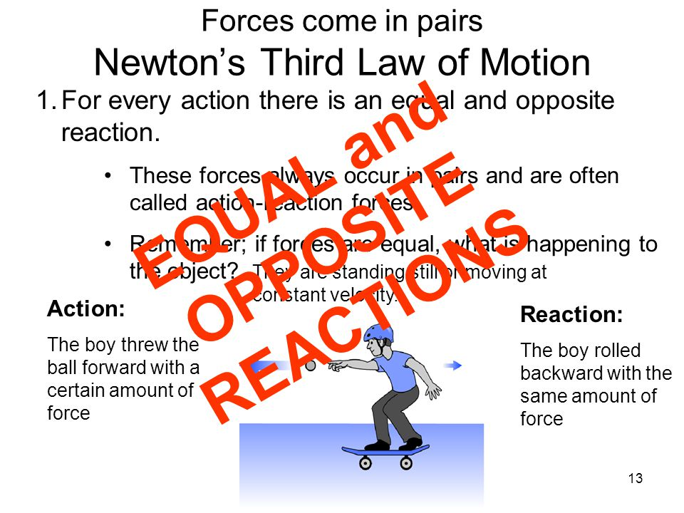 13 Forces come in pairs Newton's Third Law of Motion 1.For every action there is an equal and opposite reaction. These forces always occur in pairs an