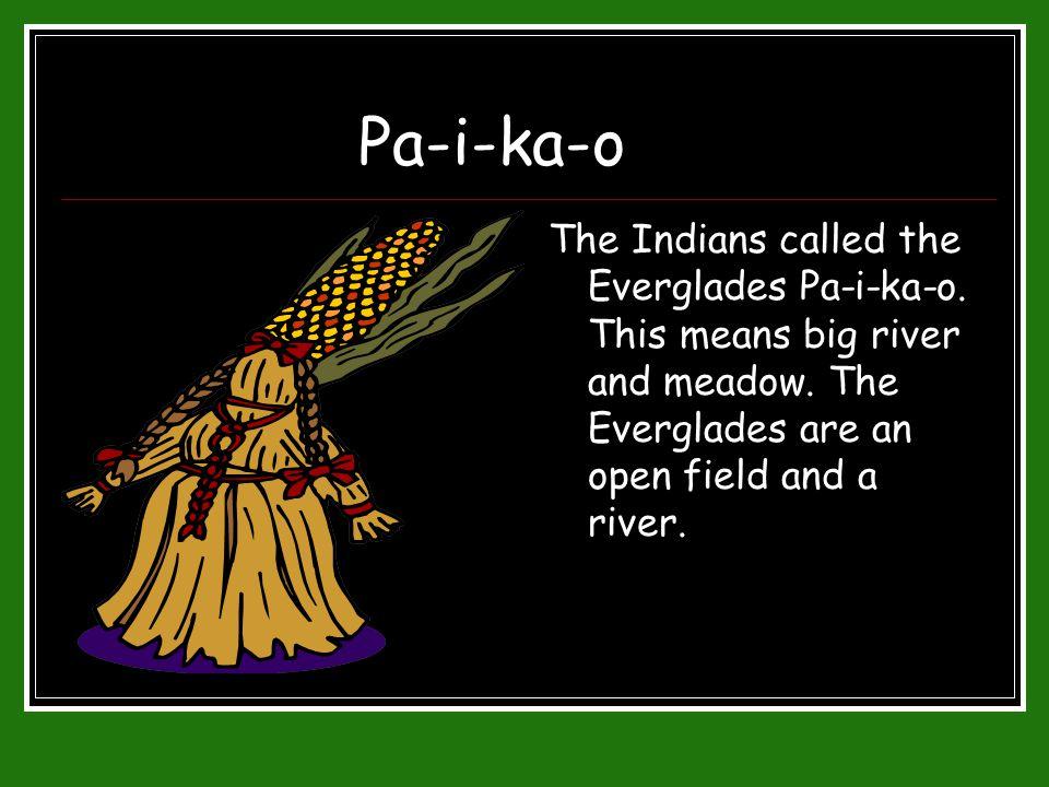 Pa-i-ka-o The Indians called the Everglades Pa-i-ka-o.