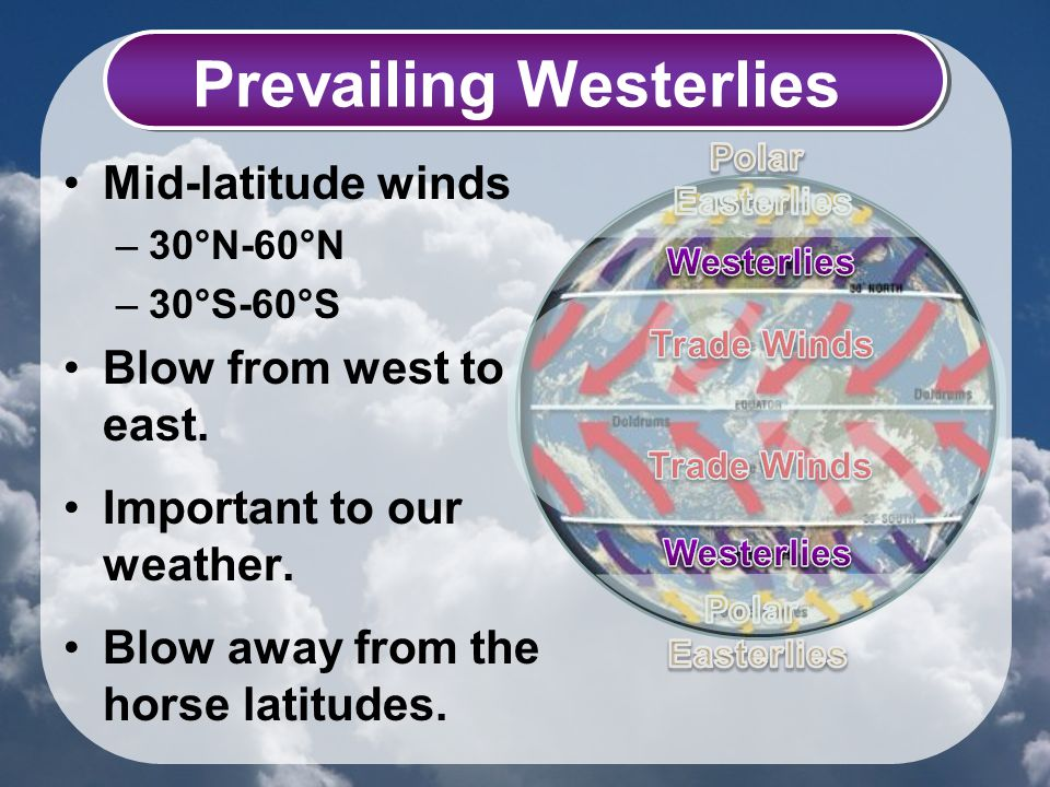 Prevailing Westerlies Mid-latitude winds –30°N-60°N –30°S-60°S Blow from west to east. Important to our weather. Blow away from the horse latitudes.