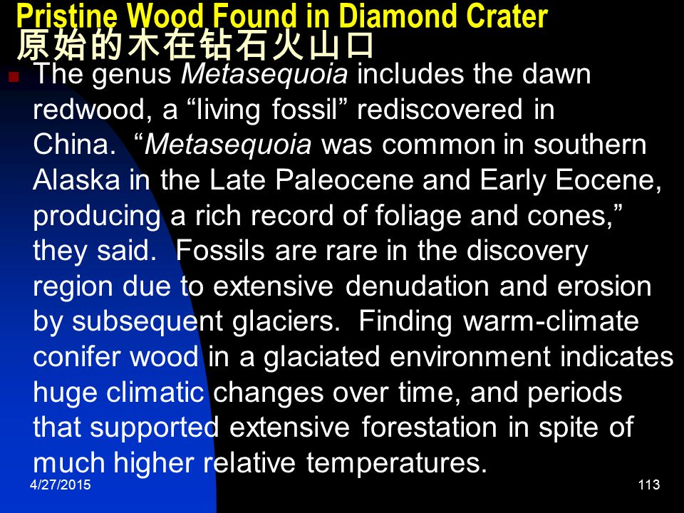 4/27/2015114 Pristine Wood Found in Diamond Crater 原始的木在钻石火山口 Fossil material can fall into a kimberlite crater as a result of the eruption, or can be washed in later.