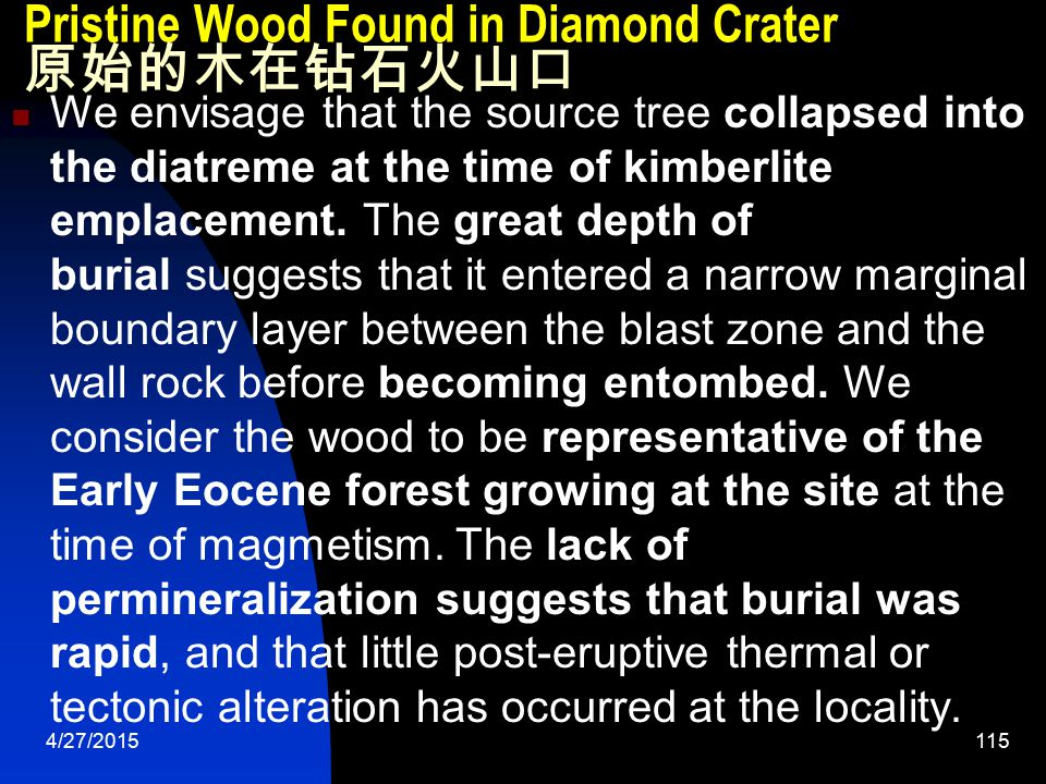 4/27/2015115 Pristine Wood Found in Diamond Crater 原始的木在钻石火山口 We envisage that the source tree collapsed into the diatreme at the time of kimberlite emplacement.