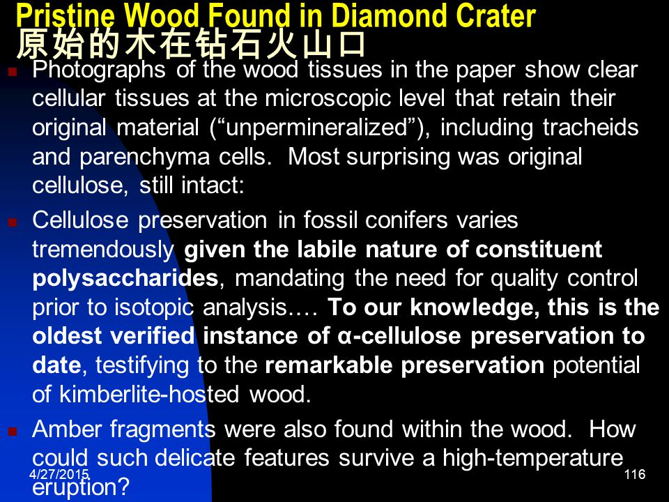 4/27/2015117 Pristine Wood Found in Diamond Crater 原始的木在钻石火山口 Despite the relatively subtle features attributed to thermal alteration noted above, we find little evidence that either the quality of cellulose preservation or the isotopic signatures of the various analyzed fractions have been overprinted.