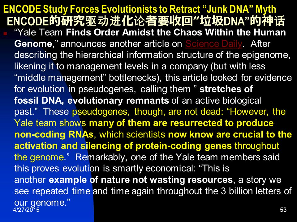 4/27/201553 ENCODE Study Forces Evolutionists to Retract Junk DNA Myth ENCODE 的研究驱动进化论者要收回 垃圾 DNA 的神话 Yale Team Finds Order Amidst the Chaos Within the Human Genome, announces another article on Science Daily.