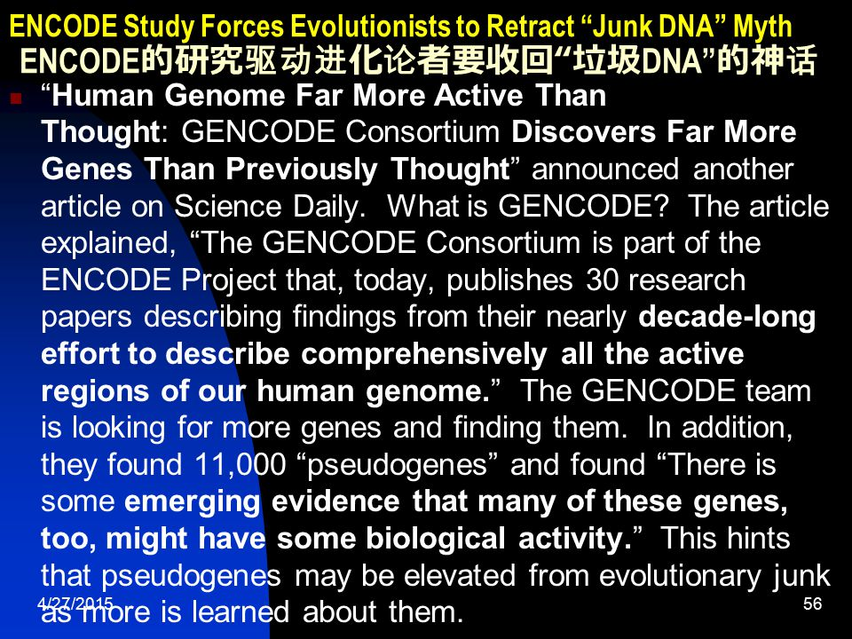 4/27/201556 ENCODE Study Forces Evolutionists to Retract Junk DNA Myth ENCODE 的研究驱动进化论者要收回 垃圾 DNA 的神话 Human Genome Far More Active Than Thought: GENCODE Consortium Discovers Far More Genes Than Previously Thought announced another article on Science Daily.