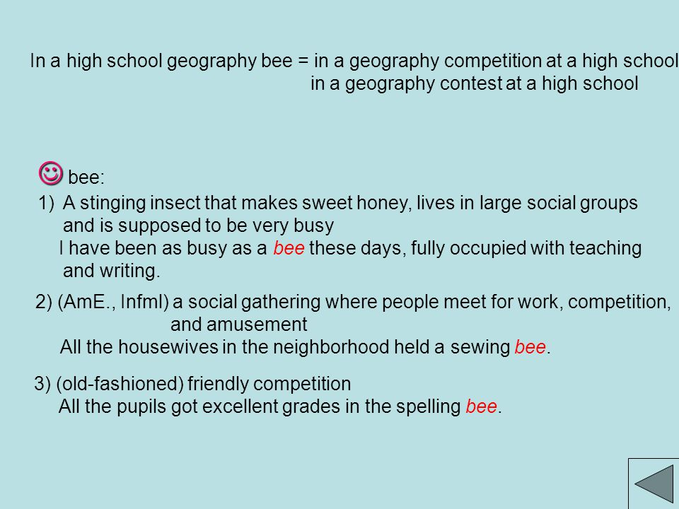 In a high school geography bee = in a geography competition at a high school; in a geography contest at a high school bee: 1)A stinging insect that makes sweet honey, lives in large social groups and is supposed to be very busy I have been as busy as a bee these days, fully occupied with teaching and writing.