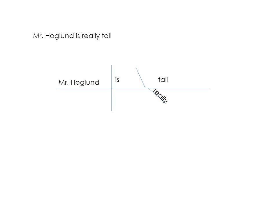 Mr. Hoglund is really tall Mr. Hoglund istall really
