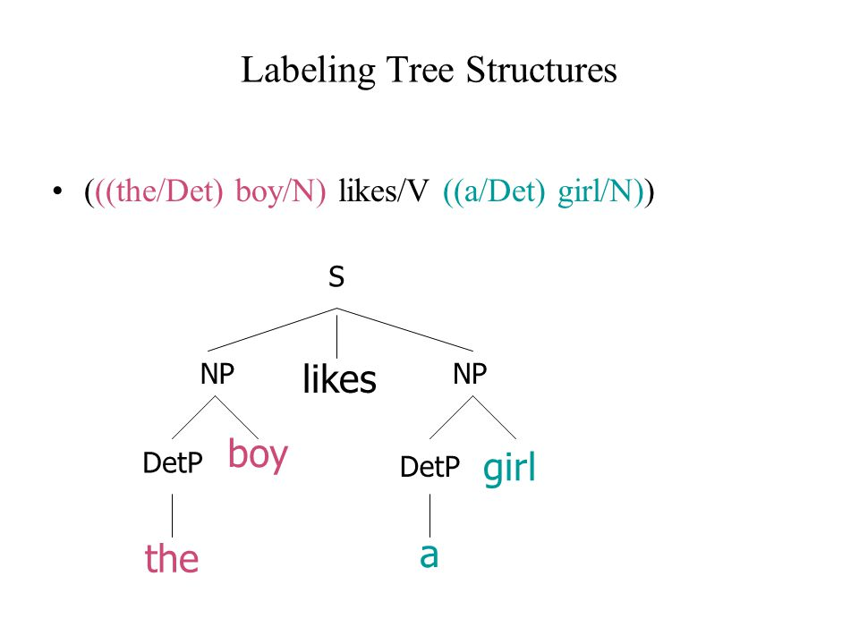 Labeling Tree Structures (((the/Det) boy/N) likes/V ((a/Det) girl/N)) boy the likes girl a DetP NP DetP S