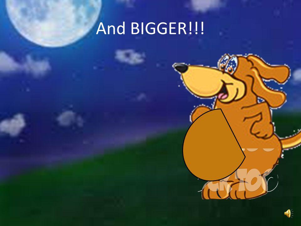 And BIGGER
