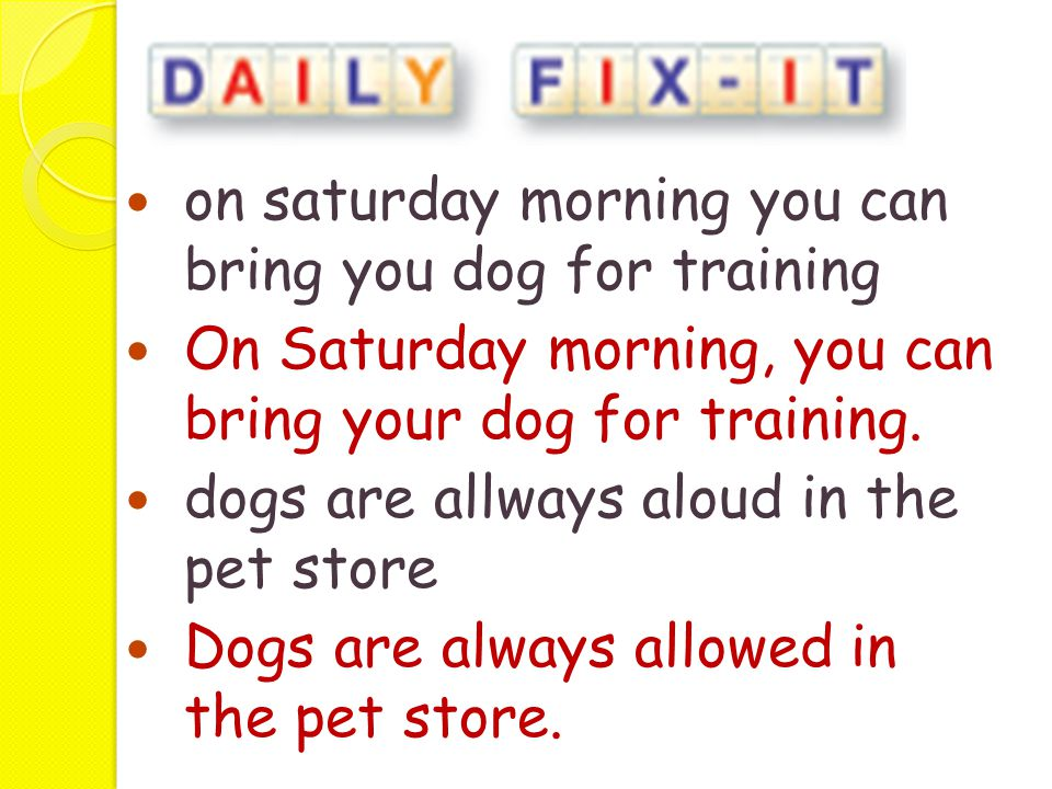 on saturday morning you can bring you dog for training On Saturday morning, you can bring your dog for training. dogs are allways aloud in the pet sto