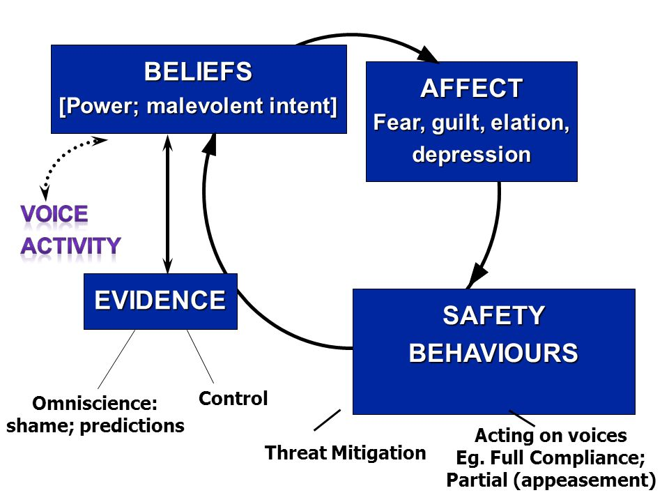 BELIEFS [Power; malevolent intent] EVIDENCE SAFETYBEHAVIOURS AFFECT Fear, guilt, elation, depression Omniscience: shame; predictions Control Threat Mitigation Acting on voices Eg.