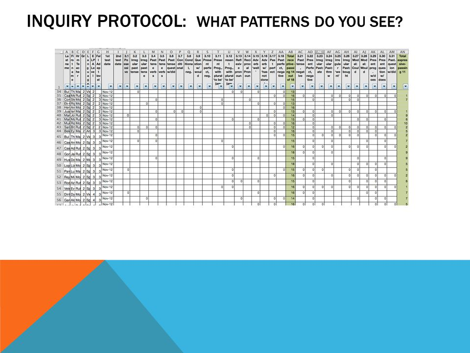INQUIRY PROTOCOL: WHAT PATTERNS DO YOU SEE