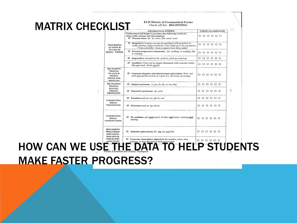 HOW CAN WE USE THE DATA TO HELP STUDENTS MAKE FASTER PROGRESS? MATRIX CHECKLIST
