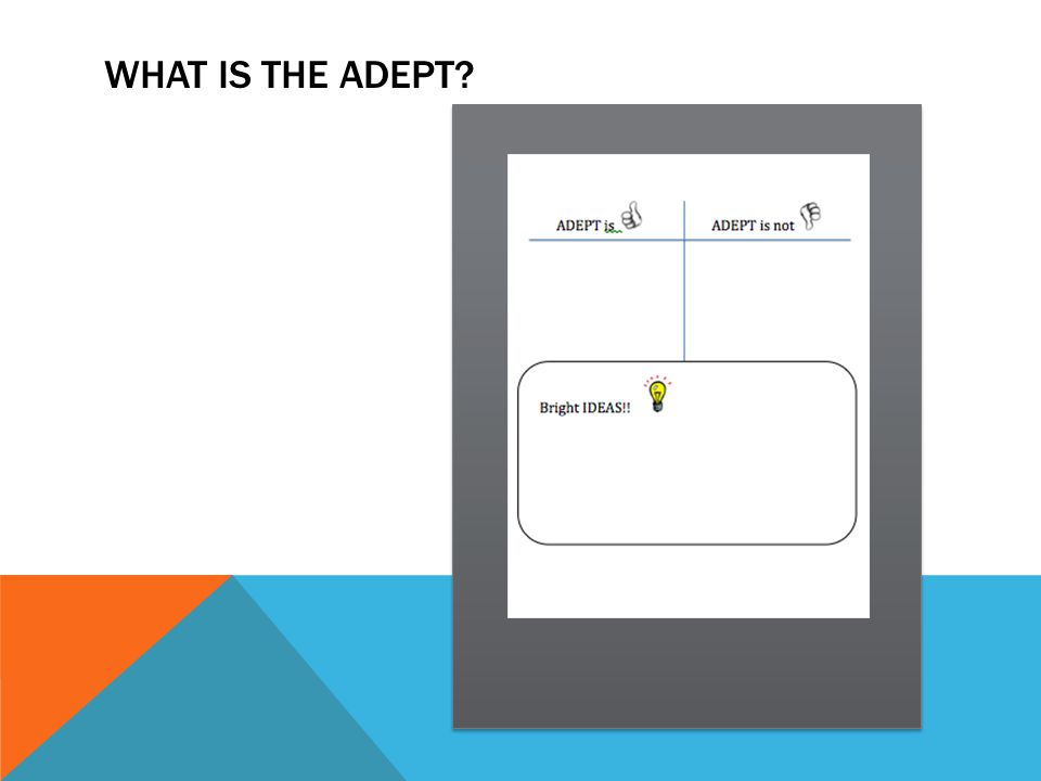 WHAT IS THE ADEPT?