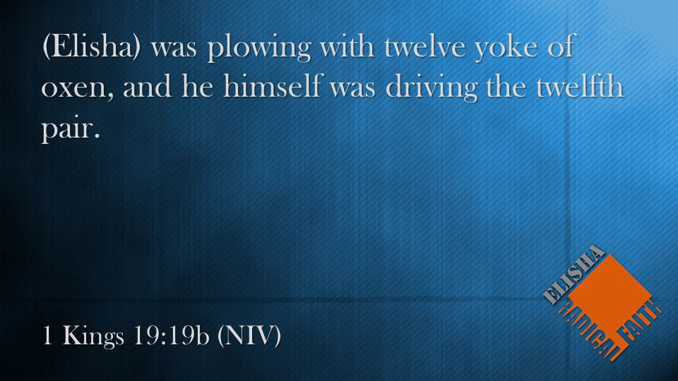 1 Kings 19:19b (NIV) (Elisha) was plowing with twelve yoke of oxen, and he himself was driving the twelfth pair.
