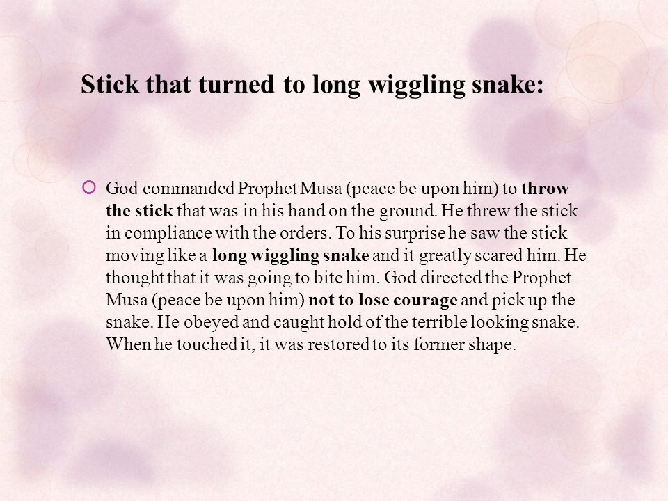 Stick that turned to long wiggling snake:  God commanded Prophet Musa (peace be upon him) to throw the stick that was in his hand on the ground.