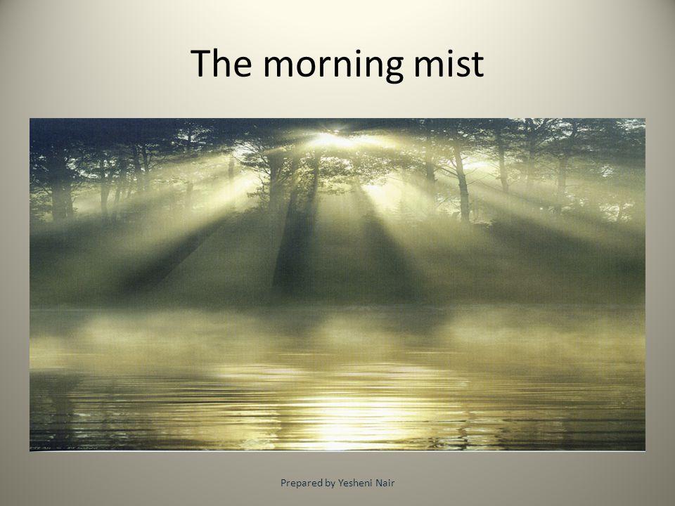 The morning mist Prepared by Yesheni Nair