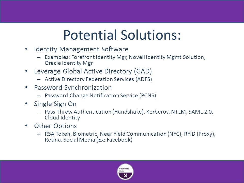Potential Solutions: Identity Management Software – Examples: Forefront Identity Mgr, Novell Identity Mgmt Solution, Oracle Identity Mgr Leverage Global Active Directory (GAD) – Active Directory Federation Services (ADFS) Password Synchronization – Password Change Notification Service (PCNS) Single Sign On – Pass Threw Authentication (Handshake), Kerberos, NTLM, SAML 2.0, Cloud Identity Other Options – RSA Token, Biometric, Near Field Communication (NFC), RFID (Proxy), Retina, Social Media (Ex: Facebook)