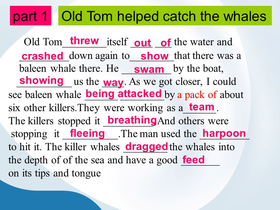 part 1 Old Tom________itself ____ ___ the water and _________down again to________that there was a baleen whale there.
