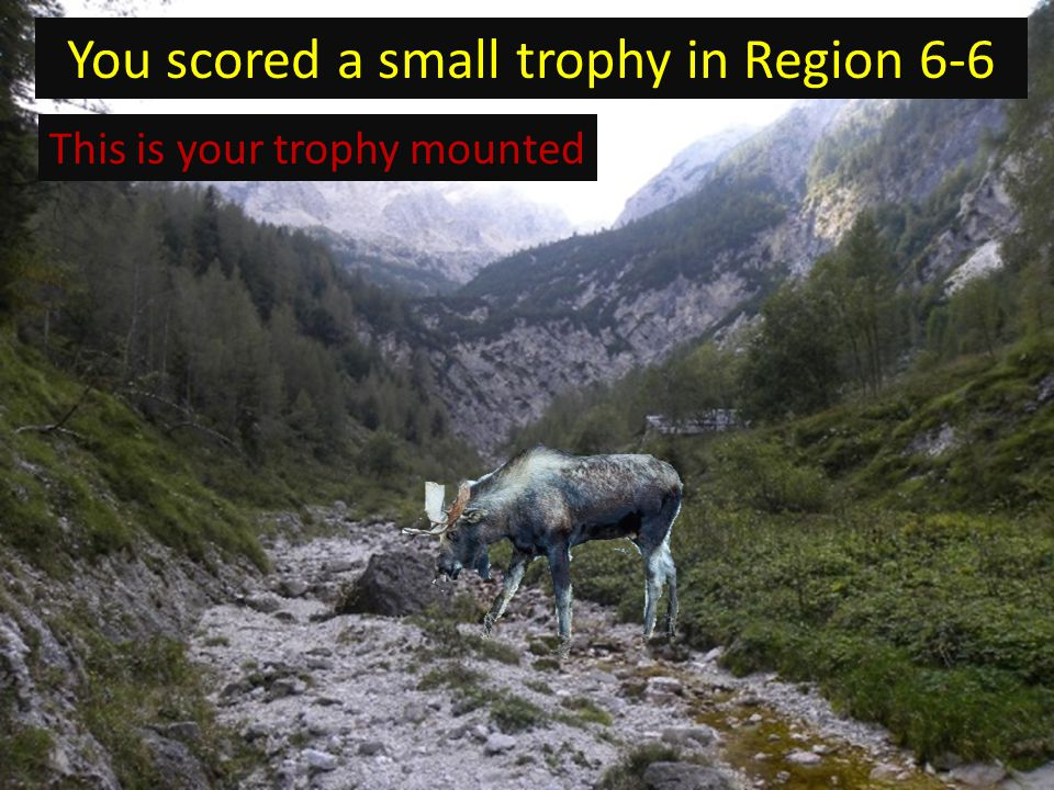 You scored a small trophy in Region 6-6 This is your trophy mounted
