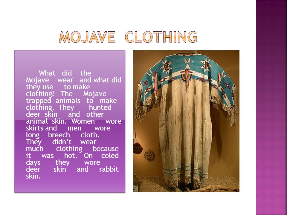 What did the Mojave wear and what did they use to make clothing? The Mojave trapped animals to make clothing. They hunted deer skin and other animal s