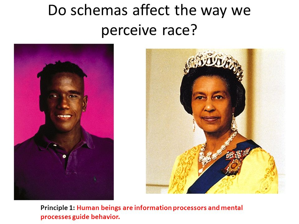 Do schemas affect the way we perceive race.