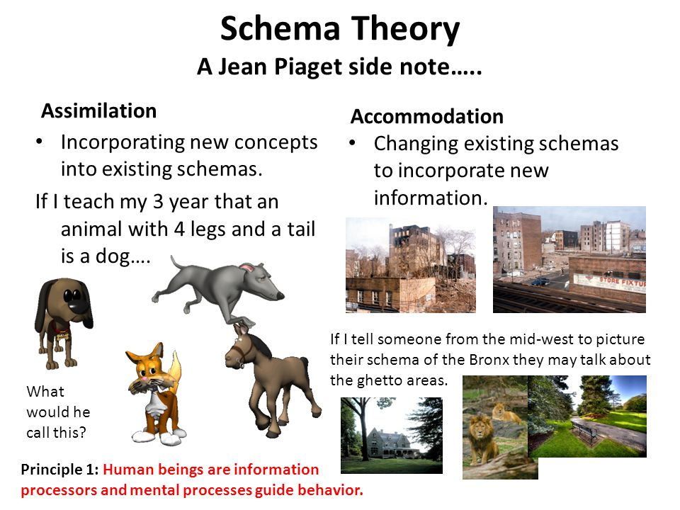 Schema Theory A Jean Piaget side note…..