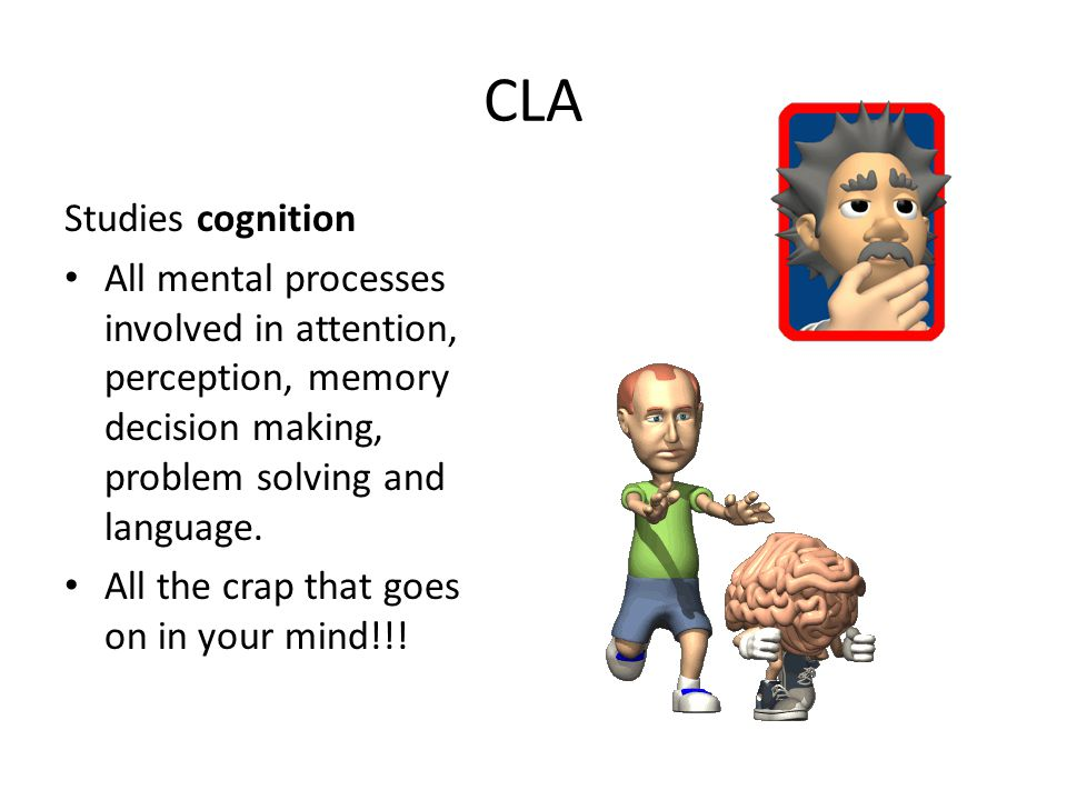 What is the Mind.They tend to look at the mind and an information-processing unit.