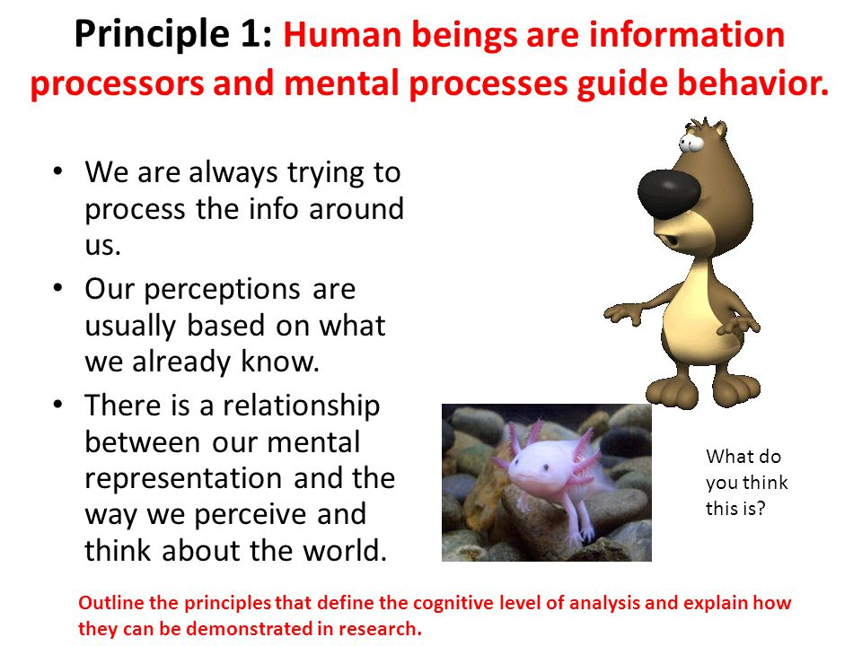 Principle 2: The mind can be studied scientifically.