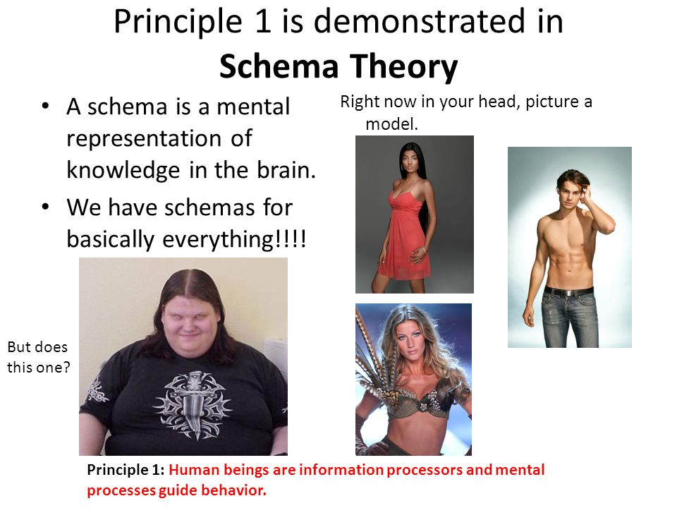 Principle 1 is demonstrated in Schema Theory A schema is a mental representation of knowledge in the brain.