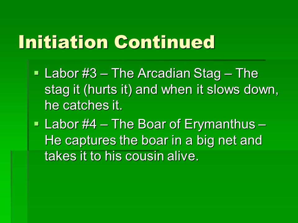 Initiation Continued  Labor #3 – The Arcadian Stag – The stag it (hurts it) and when it slows down, he catches it.