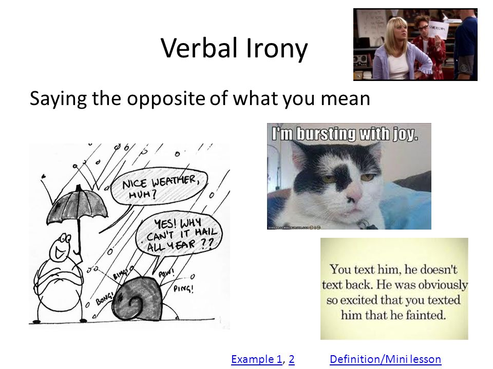Verbal Irony Saying the opposite of what you mean Example 1Example 1, 22Definition/Mini lesson