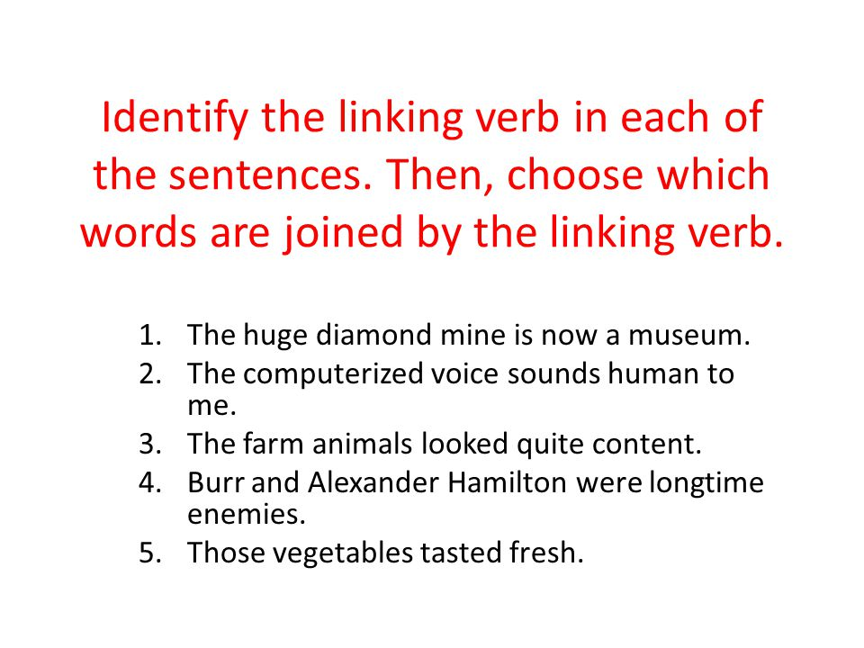 Identify the linking verb in each of the sentences. Then, choose which words are joined by the linking verb. 1.The huge diamond mine is now a museum.