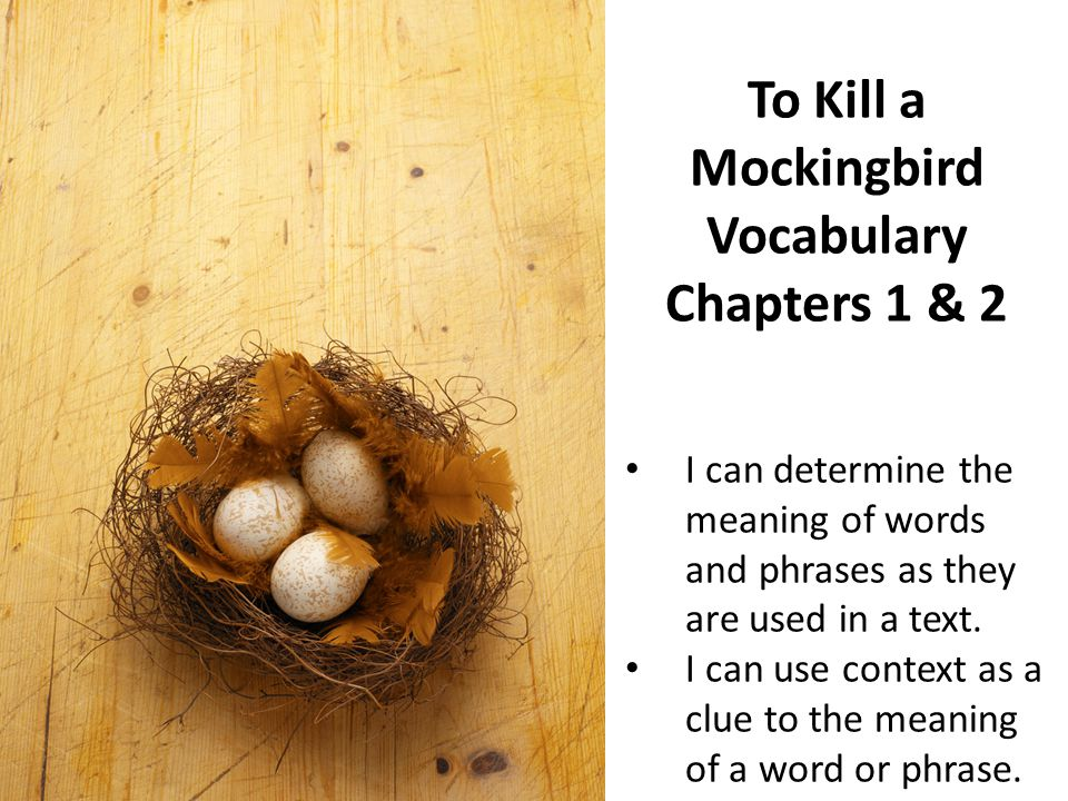 to kill a mockingbird chapter 2 We will write a custom essay sample on to kill a mockingbird – chapter to kill a mockingbird essay – explain how 2 character analysis in to kill a.