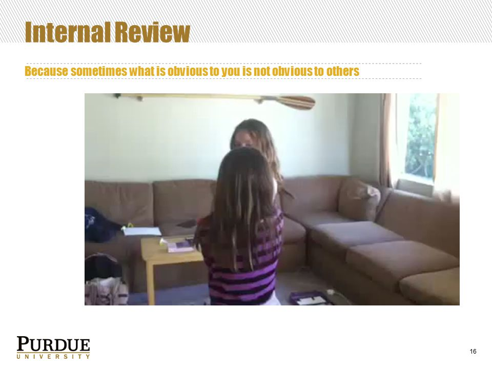 16 Internal Review Because sometimes what is obvious to you is not obvious to others