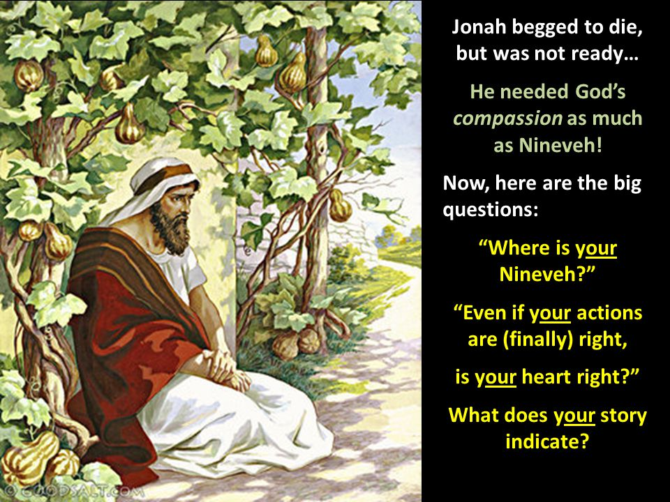 "Jonah begged to die, but was not ready… He needed God's compassion as much as Nineveh! Now, here are the big questions: ""Where is your Nineveh?"" ""Even"