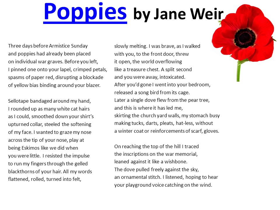 PoppiesPoppies by Jane Weir Three days before Armistice Sunday and poppies had already been placed on individual war graves. Before you left, I pinned