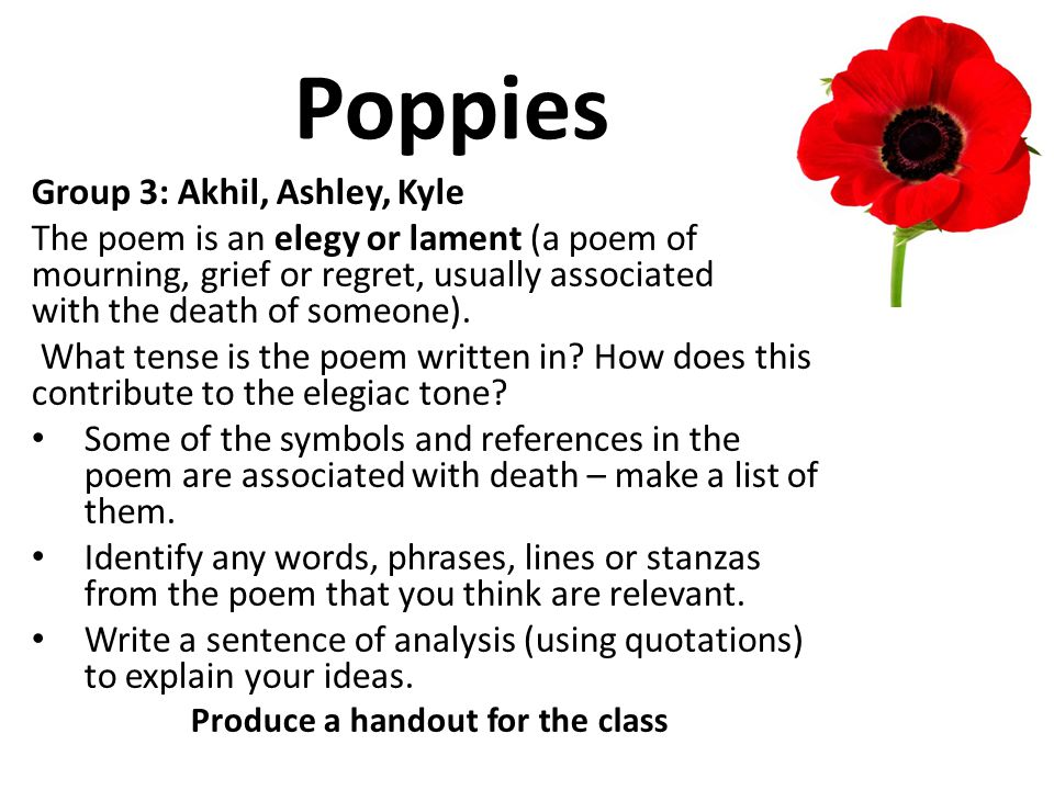 Poppies Group 3: Akhil, Ashley, Kyle The poem is an elegy or lament (a poem of mourning, grief or regret, usually associated with the death of someone