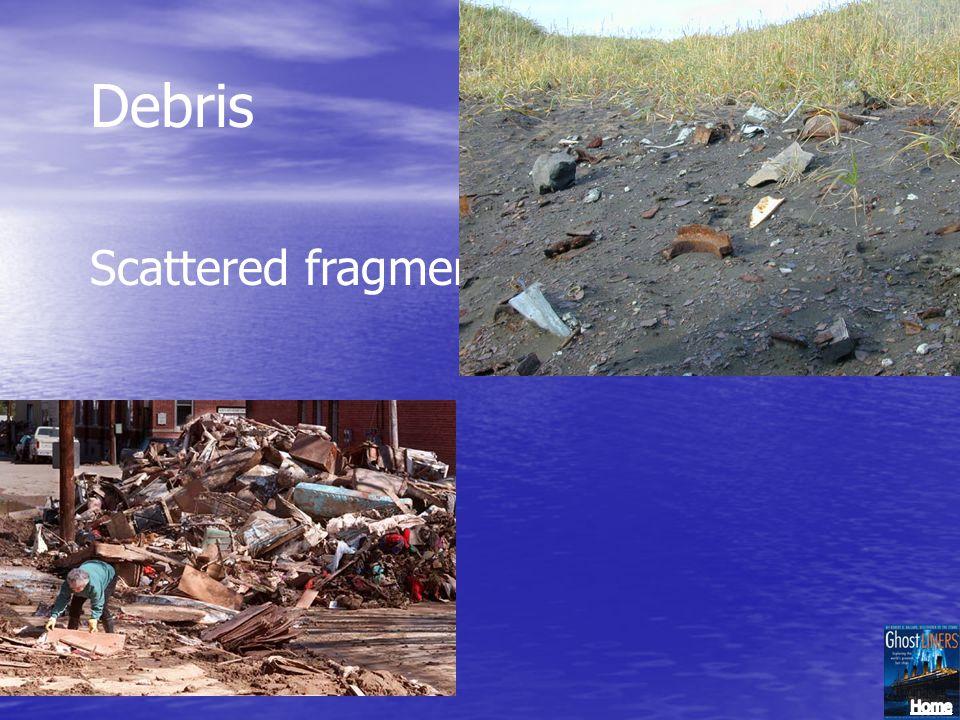 Debris Scattered fragments; ruins; rubbish