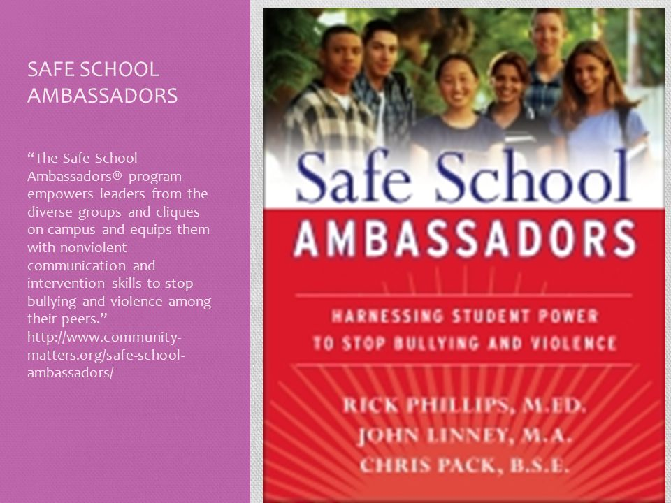 """SAFE SCHOOL AMBASSADORS """"The Safe School Ambassadors® program empowers leaders from the diverse groups and cliques on campus and equips them with nonv"""