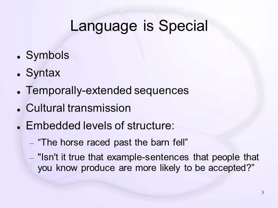 Language is Special Symbols Syntax Temporally-extended sequences Cultural transmission Embedded levels of structure:  The horse raced past the barn fell  Isn t it true that example-sentences that people that you know produce are more likely to be accepted? 3