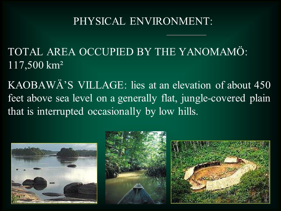 PHYSICAL ENVIRONMENT: TOTAL AREA OCCUPIED BY THE YANOMAMÖ: 117,500 km² KAOBAWÄ'S VILLAGE: lies at an elevation of about 450 feet above sea level on a generally flat, jungle-covered plain that is interrupted occasionally by low hills.