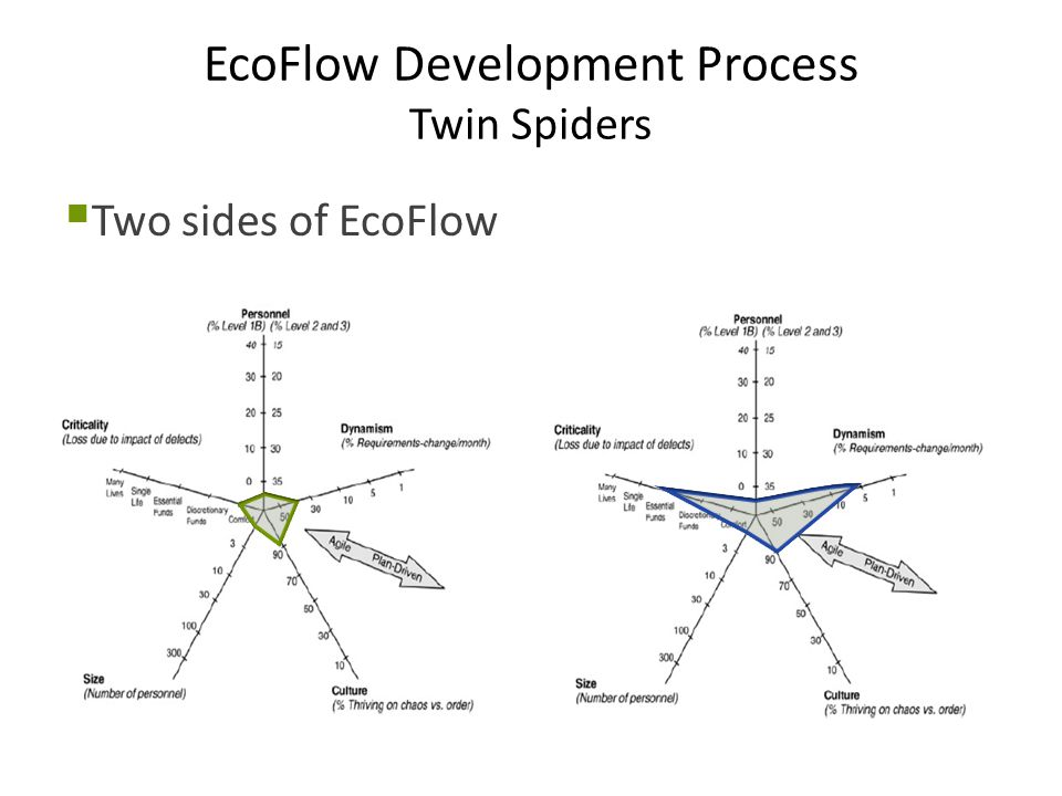 EcoFlow Development Process Twin Spiders  Two sides of EcoFlow