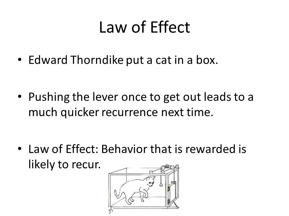 Law of Effect Edward Thorndike put a cat in a box.