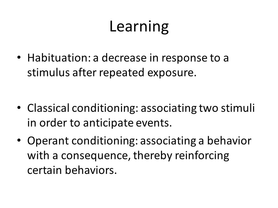 Learning Habituation: a decrease in response to a stimulus after repeated exposure.
