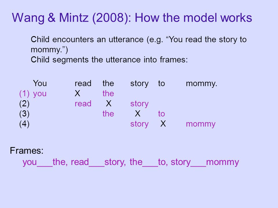 Wang & Mintz (2008): How the model works Child encounters an utterance (e.g.